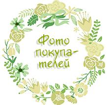 http://adenium-doma.ru/index/akcii/0-419